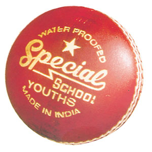 READERS SPECIAL SCHOOL CRICKET BALL
