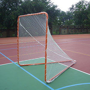 PORTABLE LACROSSE GOAL AND NET